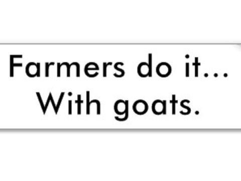 http://www.zazzle.com/farmers_do_it_with_goats_bumper_sticker-128152398636527502
